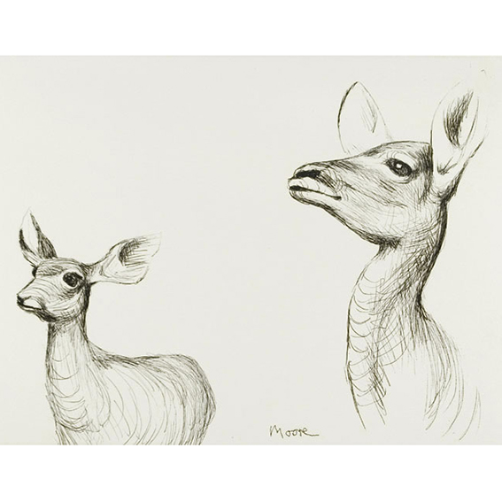 Antelope 1982 Etching . Signed and numbered in pencil. From the Animals in the Zoo album