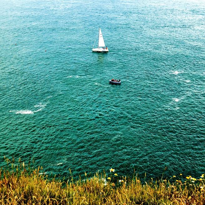 Berry head cliff edge TEST LO RES