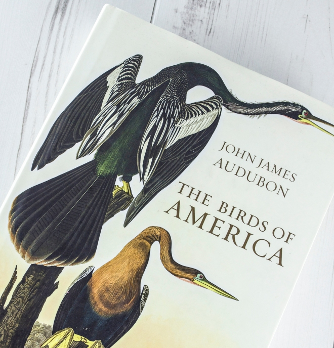 John James Audubon Birds of America book via http://www.ellasplace.me