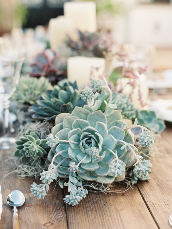 #Succulent #wedding table setting at http://www.ellasplace.me via romanceweddings.co.uk